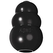 Kong Extreme treat toy.  For dogs 15-35 lbs. establishes play.  Also suitable for large puppies